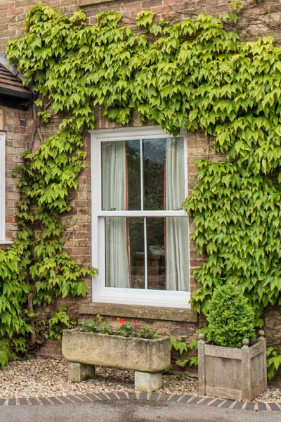 sash window image